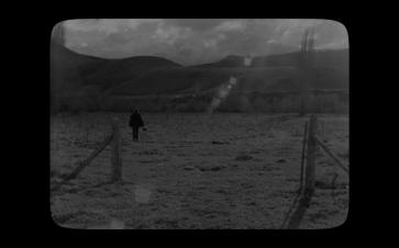 [Pewen]Araucaria film still01