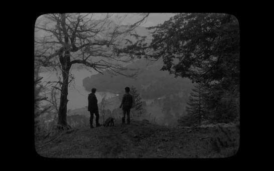 [Pewen]Araucaria film still03