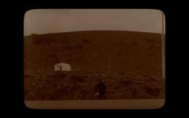[Pewen]Araucaria film still04