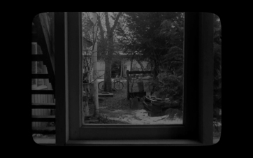 [Pewen]Araucaria film still06