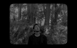[Pewen]Araucaria film still09
